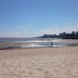 Year Abroad Diaries: My Last Days in Uruguay